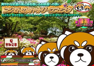 Panda_Child_Leaf2019 640.jpg
